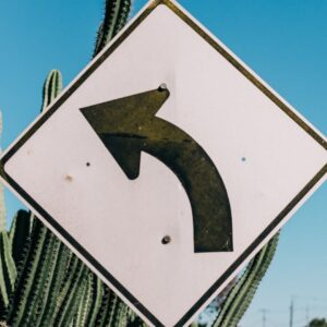 White left curve road sign in front of a high cactus plant and blue sky © Rachel Claire